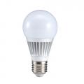 6W Bulb 550LM
